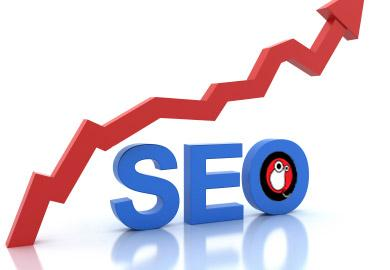 seo and programming solutions